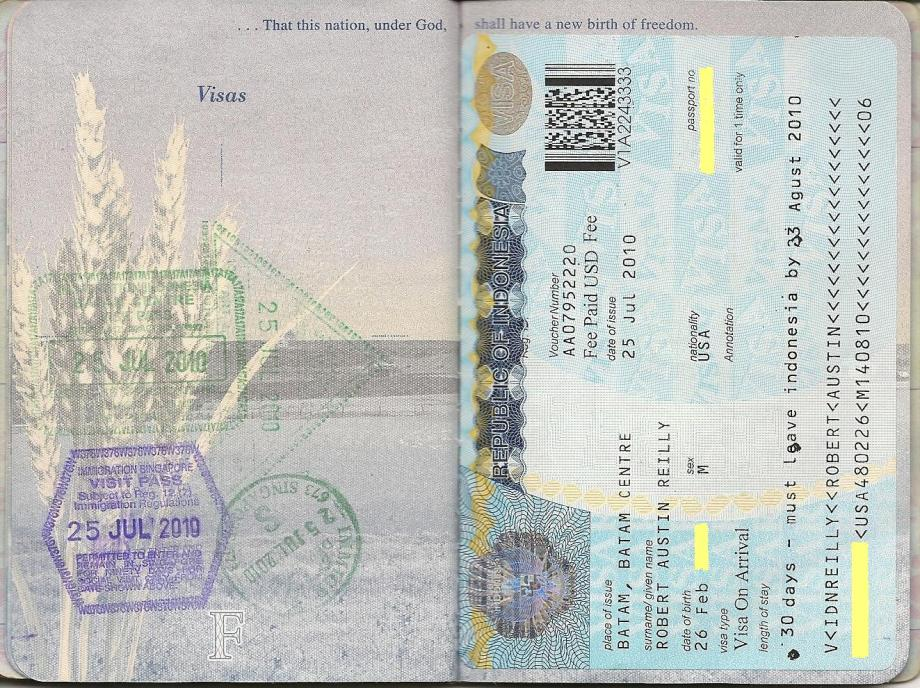 visa application form to enter russia